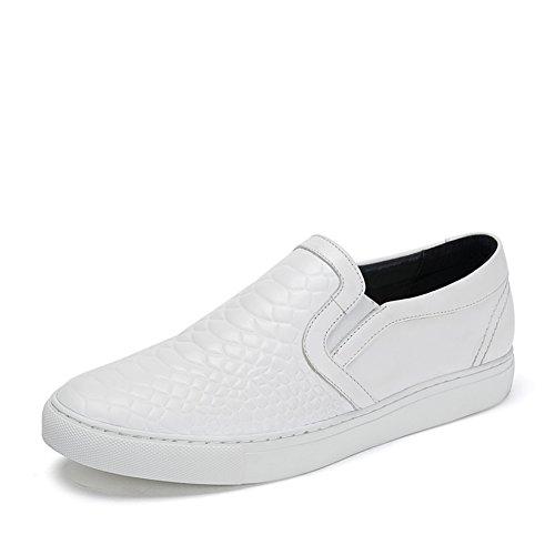 Zapatos primavera/Zapatos ocasionales pala los hombres blanco