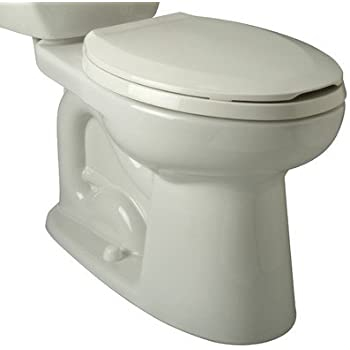 Zurn Z5555 Bwl K Toilet Bowl Only Ada Elongated Siphon