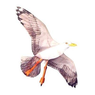 Jackite Sea Gull Kite, 42.5