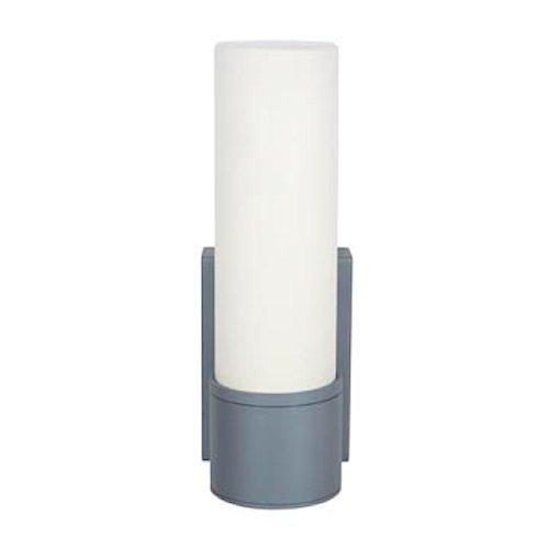 Access Outdoor Lighting (Access Lighting 20367MG-SAT/OPL NyzWet Location Wall Fixture)