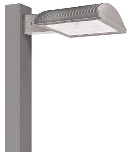 Dimmable Type Gray Finish 4000 K RAB Lighting ALED2T150NRG//D10 LED High Wattage Type II Area Light Neutral Color Temperature