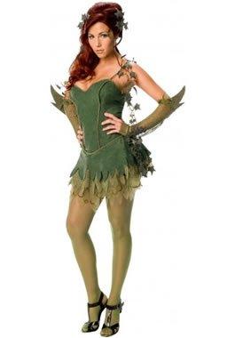 Secret Wishes Batman Poison Ivy Costume, Green, Medium ()