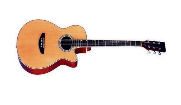 Rochester - Sgs2043 -ce1eq guitarra electroacustica de 6 cuerd ...