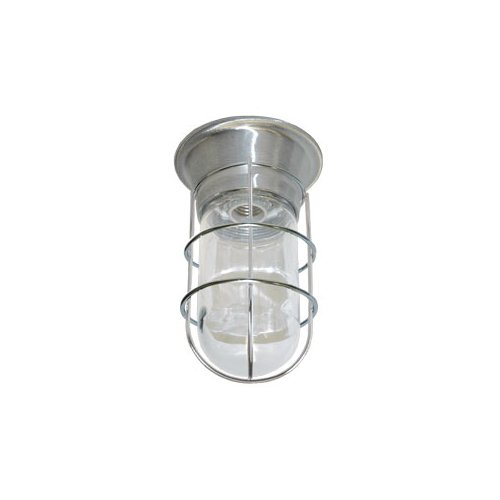 CHG E-Z Mount Canopy Light Fixutre with Thermal and Shock Resistant Tempered Glass Globe - W/ Wire Guard - L55-2024