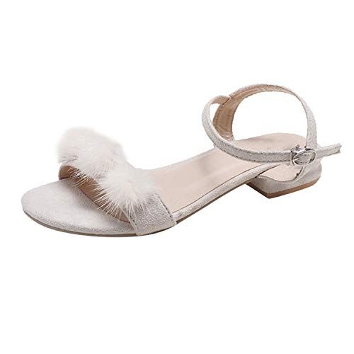 Shoes Woman Casual Lady Outdoor Slippers Low Heel Sandals Shoes Sandalias,Beige,37,United States