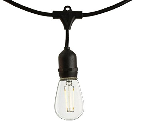 Patio Light Stringer 48 ft. Black Wire Medium Base S14 Bulbs Included Bulbrite 810075