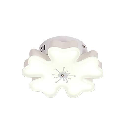 - Starry Lighting SL-62919-1,Modern Flower LED Ceiling Light,Aluminium LED Ceiling Lamp with Flower Acrylic Shade,Flush Mount Ceiling Pendant Lighting Fixture