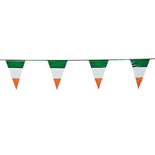 Fun Express Irish Flag Pennant