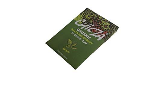Chicza chicza Rainforest gum-mint chicles, 30-grams (Pack de 10)