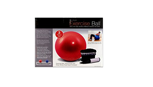 Exercise ball with pump, Case of 12 by bulk buys