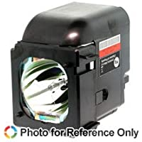 SAMSUNG HLS4676S TV Replacement Lamp with Housing