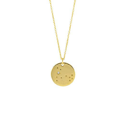Columbus 14K Gold Plated Astrology Horoscope Constellation Zodiac Coin Necklace (Pisces) (Coin Pisces Zodiac)