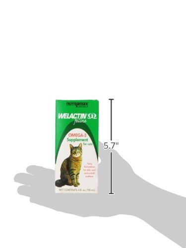 Welactin Feline Liquid, 4-Ounce 8