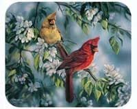 Fiddler's Elbow Cardinals Mouse Pad
