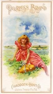 - MAGNET Selma Fresno Girl Raisin Grape Fruit Crate Magnet Travel Viintage Poster Print