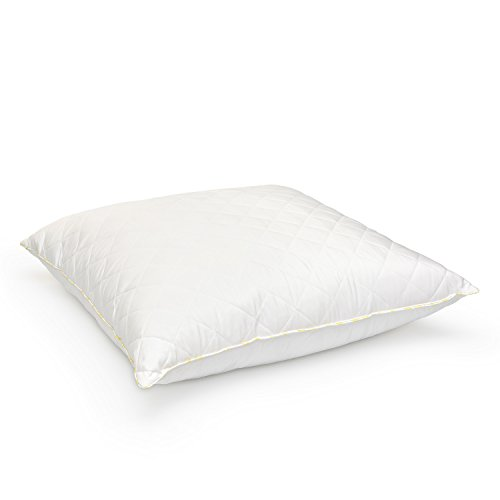 Laura Ashley Luxurious Quilted Ava Euro Pillow - Hypoallergenic Polyester - Available in Medium, Firm and Extra Firm Density - 26\