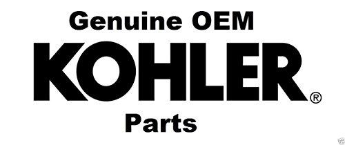 Kohler Genuine 12-874-07-S Piston Kit with Ring Set STD 12 874 07-S OEM