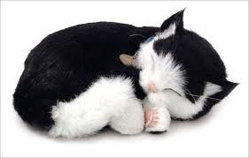 Breathing Cat by Perfect Petzzz (Color: Black)