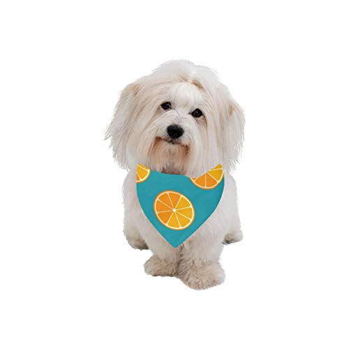 Easter Pet Dog Cat Bandana Lemon And Orange Clementine Twig Fruits Delicious Winter Vitamin Design Fashion Printing Bibs Triangle Head Scarfs Kerchief Accessories For Large Dog Cat Pet Birthdays Gifts