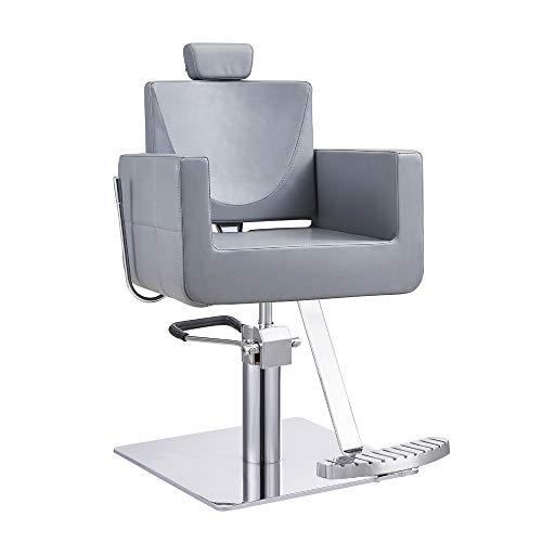 All Purpose Reclining Beauty Salon All Purpose Chair