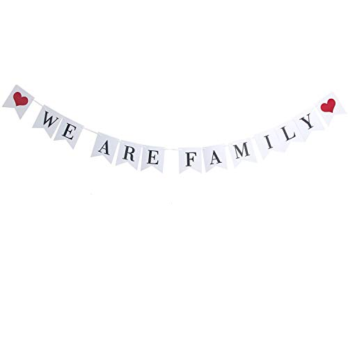IDS Family Bunting Banner Family Photo Prop Family Reunion Party Banner for Family Party Home Decoration - WE are Family]()