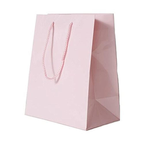 JAM PAPER Glossy Gift Bags with Rope Handles - Medium - 8 x 4 x 10 - Pink - Sold Individually (Pink Confirmation Note Cards)