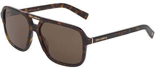 Dolce and Gabbana DG4354 502/73 Havana DG4354 Square Sunglasses Lens Category ()