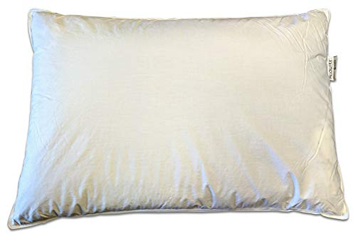 Kyoto King Bed - Pillowtex Kyoto Pillow - Half Buckwheat and Half Polyester Pillow - Japanese Style Pillow (King (20 Inches x 36 Inches))