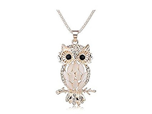 Stylish Gallant Sparkling Owl Crystal Charming Flossy Necklaces & Pendants Necklace For Women M099 (Celebrity Couples Halloween Costumes)