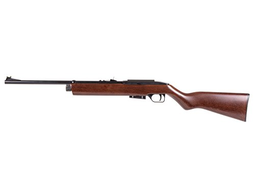 Crosman 1077W Repeatair CO2 Rifle (Best C02 Air Rifle)
