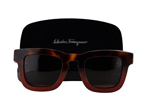 d83bde33149 Salvatore Ferragamo SF771S Sunglasses Havana Red w Brown Lens 207 SF 771S -  Buy Online in Kuwait.