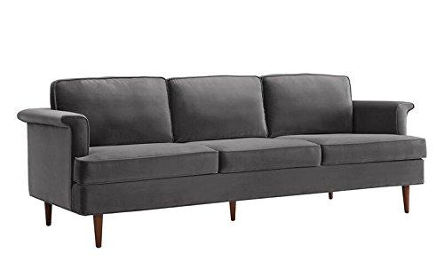 TOV Furniture The Porter Collection Contemporary Style Velvet Upholstered Living Room Sofa with Beech Wood Legs, Grey