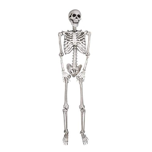 Koval Inc. 5ft Life Size Posable Full Body