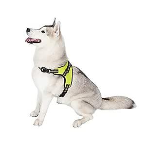 Arnés para perros tipo sillín de Tail, arnés ajustable con asa ...