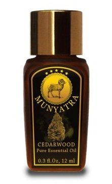 Eucalyptus Huile Essentielle - 12 ML (0,3 oz) Bouteille - En MUNYATRA (Eucalyptus provenant Népal) de qualité thérapeutique