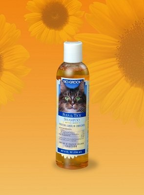 Bio-Groom Cat Flea and Tick Conditioning Shampoo, 8-Ounce