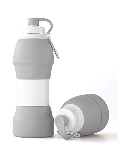 LEWONDE Collapsible Water Bottle - BPA Free 20 OZ Travel Mug - Cool Gear for Hiking Camping Cycling Sport (Cool Gray)