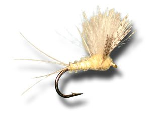 - CDC Biot Comparadun - Light Cahill Fly Fishing Fly - Size 16 - 6 Pack