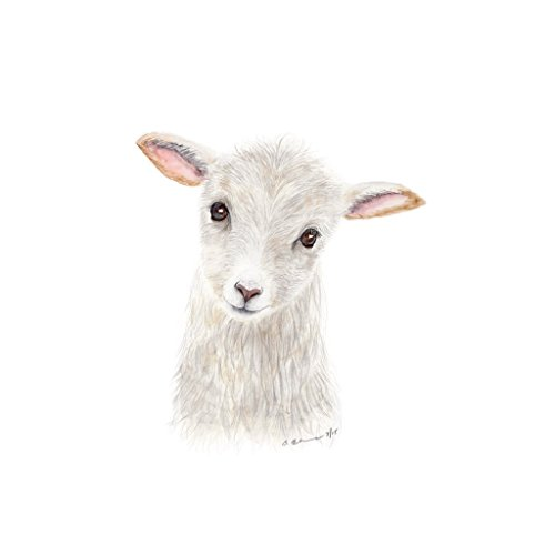 Baby Sheep -Lamb Watercolor, Farm Nursery Decor, Grey, White, Pink Print - Various Sizes Available