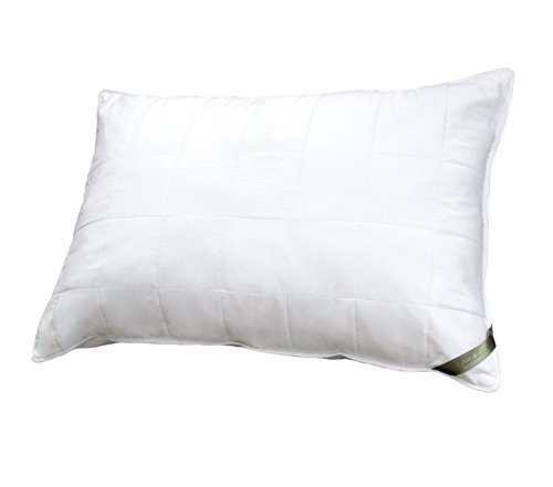 SMARTSILK The Pillow (Queen)   Luxurious 100% Natural Tussah Silk   Breathable Micro-Gel Fiber   Temperature Regulating   Hypoallergenic & Asthma Friendly   Easy-Care   Comfort Level 2