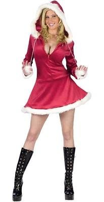 Hooded Mrs. Santa Costume - Medium/Large - Dress Size 10-14 (Plus Size Sexy Santa Christmas Costume)