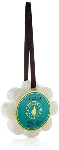 Spongelle Wild Flower 14+ Uses Body Wash Buffer, Ginger Bergamot, 4.25