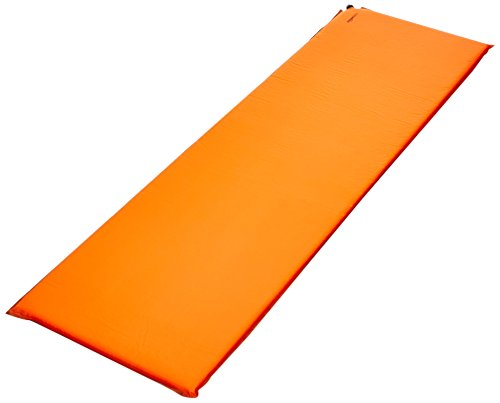 AmazonBasics parent APD 001 Self Inflating Air Pad