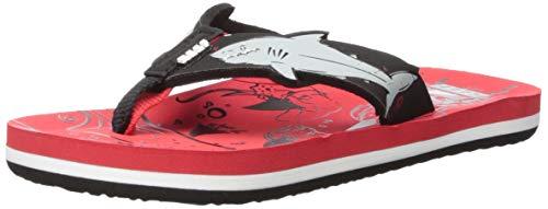 (Reef Unisex AHI Shark Sandal, red, 13-1 Medium US Little Kid)