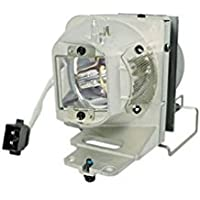 GOLDENRIVER BL-FP210B / SP.77011GC01 Projector Lamp Assembly with Genuine Original OEM Bulb Inside and Generic Housing for OPTOMA HD28DSE DH1012 X351 W351 EH341