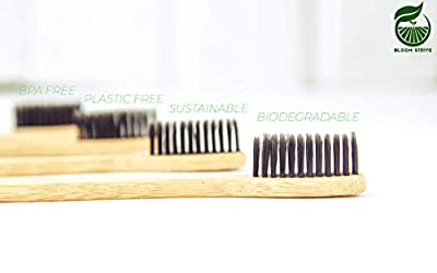 BloomStrive 8-in-1 Family Pack - Premium Bamboo Toothbrush with Soft Medium Charcoal Bristles & Bamboo Tongue Cleaner Scraper | Natural, Biodegradable, BPA Free, Organic, and Eco-Friendly Gift Idea