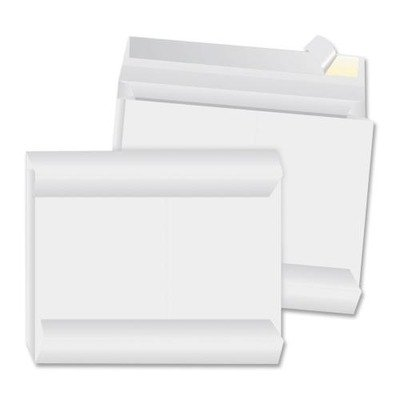 Business Source Expansion Envelope - 12amp;quot; x 16amp;quot; - Peel and Seal - Tyvek - 100 / Carton - White