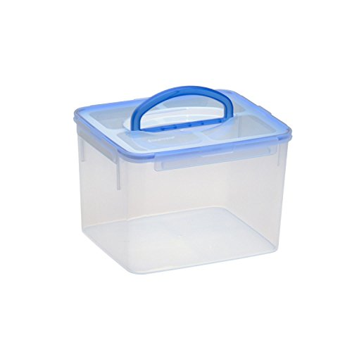 Snapware Airtight Medium Rectangle Storage Container, 23-Cup