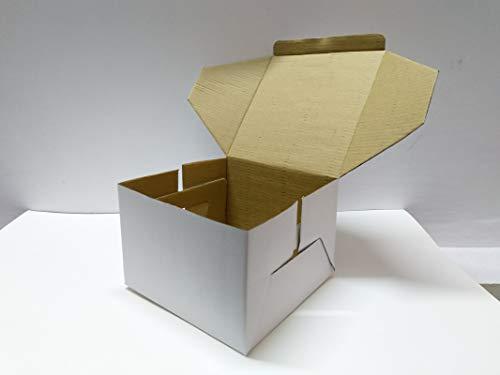 Green Kraft Plain Paper White Corrugated Cake Box – 10 Inches (Pack of 10)