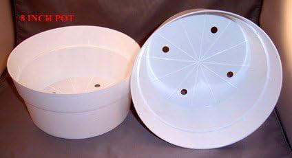White Plastic Flower Pot – 8w X 4h 8 Pack